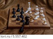 Винтажные шахматы. Стоковое фото, фотограф Александр Tолстой / Фотобанк Лори
