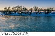 Зимний пейзаж. Стоковое фото, фотограф Алексей Голованов / Фотобанк Лори