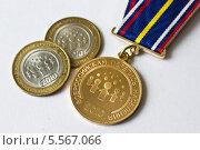 Купить «Медаль и юбилейные монеты всероссийской переписи населения 2010 года», фото № 5567066, снято 8 февраля 2014 г. (c) Sashenkov89 / Фотобанк Лори