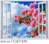 Весенний дождик, вид из окна. Стоковая иллюстрация, иллюстратор Наталья Спиридонова / Фотобанк Лори
