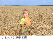 Мальчик с хлебом в поле пшеницы. Стоковое фото, фотограф Tanya Lomakivska / Фотобанк Лори