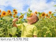 Мальчик нюхает цветок в поле подсолнухов. Стоковое фото, фотограф Tanya Lomakivska / Фотобанк Лори