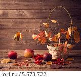 Купить «Осенний натюрморт», фото № 5573722, снято 21 ноября 2019 г. (c) Майя Крученкова / Фотобанк Лори