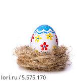 Купить «Разукрашенное пасхальное яйцо в гнезде», фото № 5575170, снято 7 февраля 2014 г. (c) Типляшина Евгения / Фотобанк Лори