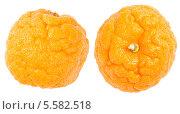 Купить «Сморщенные апельсины, целлюлит», фото № 5582518, снято 1 февраля 2014 г. (c) Ирина Денисова / Фотобанк Лори