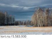 Зимние лес и поле. Стоковое фото, фотограф ASA / Фотобанк Лори