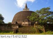Купить «Крупнейшая буддийская ступа Rankoth Vehera, город Полоннарува, Шри-Ланка», фото № 5612522, снято 25 января 2014 г. (c) Ирина Яровая / Фотобанк Лори