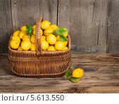 Купить «Корзина с лимонами на деревянном фоне», фото № 5613550, снято 10 февраля 2014 г. (c) Ирина Денисова / Фотобанк Лори