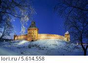 Купить «Кремль в Великом Новгороде ночью», фото № 5614558, снято 21 марта 2019 г. (c) Зезелина Марина / Фотобанк Лори