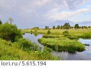 Купить «Река Ресса, Калужская область», эксклюзивное фото № 5615194, снято 13 июля 2011 г. (c) Елена Коромыслова / Фотобанк Лори