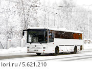 Купить «Автобус НефАЗ-5299», фото № 5621210, снято 13 января 2010 г. (c) Art Konovalov / Фотобанк Лори