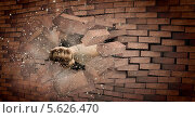 Купить «Сильная рука пробивает кирпичную стену», фото № 5626470, снято 18 июля 2019 г. (c) Sergey Nivens / Фотобанк Лори