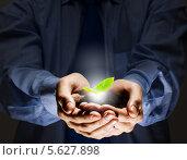 Купить «Маленький зеленый росток в мужских руках. Концепция заботы о природе», фото № 5627898, снято 13 апреля 2013 г. (c) Sergey Nivens / Фотобанк Лори