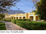 Прогулочная дорожка на территории отеля в Египте. Стоковое фото, фотограф Ольга Коцюба / Фотобанк Лори