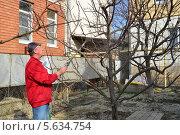 Купить «Опрыскивание деревьев медным купоросом», фото № 5634754, снято 15 февраля 2014 г. (c) Игорь Архипов / Фотобанк Лори
