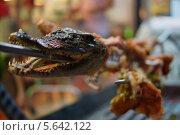 Купить «Шашлык из крокодила, экзотическая еда», фото № 5642122, снято 15 января 2014 г. (c) макаров виктор / Фотобанк Лори