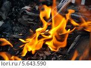 Пламя. Стоковое фото, фотограф Елена / Фотобанк Лори