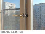 Купить «Гребёнка (фиксатор) на окне», эксклюзивное фото № 5645178, снято 26 февраля 2014 г. (c) Румянцева Наталия / Фотобанк Лори