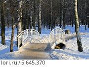 Мост в парке Лианозово. Москва (2014 год). Стоковое фото, фотограф Склярова Ирина / Фотобанк Лори