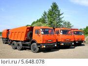 Купить «Грузовики КамАЗ-65115», фото № 5648078, снято 24 мая 2008 г. (c) Art Konovalov / Фотобанк Лори