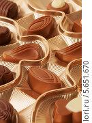 Купить «Ассорти из шоколадных конфет», фото № 5651670, снято 13 декабря 2011 г. (c) Losevsky Pavel / Фотобанк Лори
