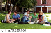 Купить «Classmates sitting on the grass chatting », видеоролик № 5655106, снято 18 июня 2019 г. (c) Wavebreak Media / Фотобанк Лори
