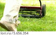 Купить «Man mowing the grass», видеоролик № 5656354, снято 18 октября 2018 г. (c) Wavebreak Media / Фотобанк Лори