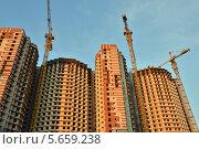 Купить «Строительство домов», эксклюзивное фото № 5659238, снято 25 февраля 2014 г. (c) Александр Алексеев / Фотобанк Лори