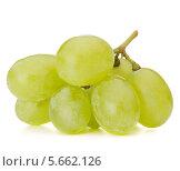 Купить «Зеленый виноград на белом фоне», фото № 5662126, снято 23 июля 2013 г. (c) Natalja Stotika / Фотобанк Лори