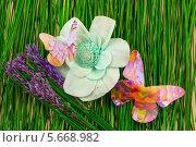 Саше, лаванда и бабочка. Стоковое фото, фотограф Сергей Филимончук / Фотобанк Лори