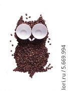 Выложенная из зерен кофе сова с глазами из кофейных чашек. Стоковое фото, фотограф Мороз Елена / Фотобанк Лори