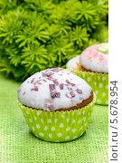 Купить «Кексы в зеленых формочках», фото № 5678954, снято 20 марта 2019 г. (c) BE&W Photo / Фотобанк Лори