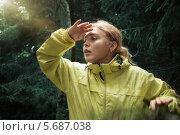 Девушка в лесу приставила руку ко лбу. Стоковое фото, фотограф Дмитрий Эрслер / Фотобанк Лори