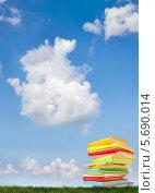 Купить «Стопка разноцветных книг на траве на фоне неба», фото № 5690014, снято 22 мая 2013 г. (c) Типляшина Евгения / Фотобанк Лори
