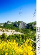 Купить «Горное плато в Провансе», фото № 5698222, снято 4 июня 2013 г. (c) Сергей Новиков / Фотобанк Лори