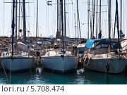Гавань с пришвартованными яхтами. Стоковое фото, фотограф Олег Прокофьев / Фотобанк Лори