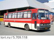 Купить «Автобус Ikarus 256», фото № 5709118, снято 14 августа 2009 г. (c) Art Konovalov / Фотобанк Лори