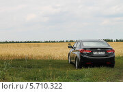 Черный автомобиль рядом с деревенским полем (2013 год). Редакционное фото, фотограф Дмитрий Романенко / Фотобанк Лори