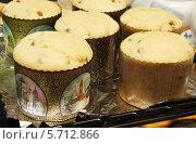Купить «Тесто для пасхальных куличей в формах, готовое к выпеканию», эксклюзивное фото № 5712866, снято 4 мая 2013 г. (c) Dmitry29 / Фотобанк Лори