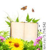 Купить «Книга на природе», иллюстрация № 5714542 (c) Лукиянова Наталья / Фотобанк Лори