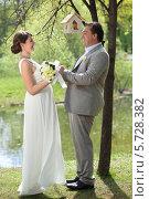 Купить «Красивая невеста и жених стоят в летнем парке, взявшись за руки», фото № 5728382, снято 10 мая 2013 г. (c) Losevsky Pavel / Фотобанк Лори