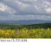 Купить «Летний пейзаж вид с холма на долину», фото № 5731634, снято 6 августа 2012 г. (c) Олег Рубик / Фотобанк Лори