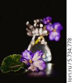Натюрморт с Узамбарской фиалкой в вазе. Стоковое фото, фотограф Ольга Денисова / Фотобанк Лори