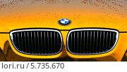 BMW в золоте (2014 год). Редакционное фото, фотограф Владимир Трифонов / Фотобанк Лори
