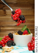 Здоровый завтрак - мюсли со свежими ягодами. Стоковое фото, фотограф Andrejs Pidjass / Фотобанк Лори