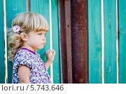 Девочка у старого забора. Стоковое фото, фотограф Евдокимова Ольга / Фотобанк Лори