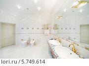 Купить «Интерьер роскошной ванной комнаты», фото № 5749614, снято 16 января 2013 г. (c) Losevsky Pavel / Фотобанк Лори