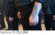 Купить «Заключенные в тюрьме. Ноги и руки заключенных», видеоролик № 5752094, снято 8 декабря 2012 г. (c) Mikhail Erguine / Фотобанк Лори