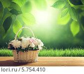 Купить «Цветы в корзине на фоне весенней листвы», фото № 5754410, снято 1 марта 2014 г. (c) Iakov Kalinin / Фотобанк Лори