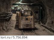 Купить «Электровоз в урановой шахте», фото № 5756894, снято 24 октября 2013 г. (c) Геннадий Соловьев / Фотобанк Лори